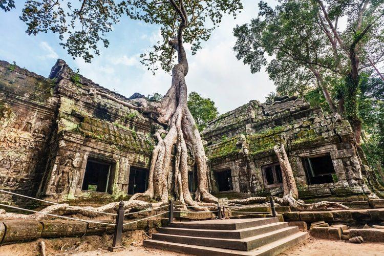 Ta prohm - Cosa da fare in Vietnam e Cambogia in Ferragosto
