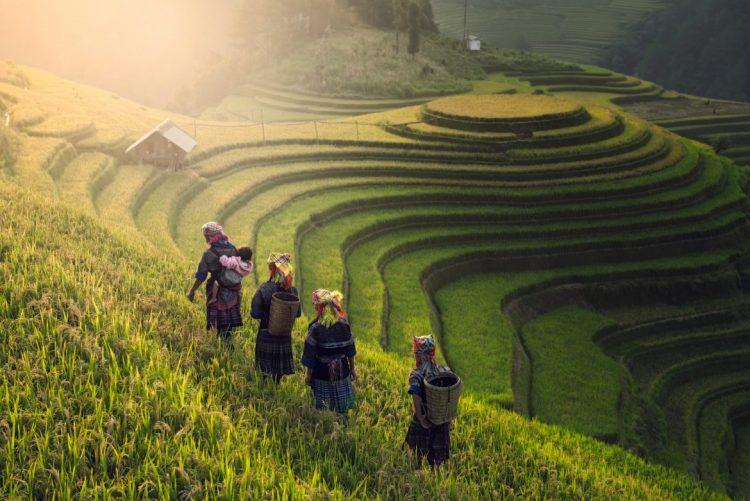 Mu Cang Chai, la terra splendida al Nord del Vietnam